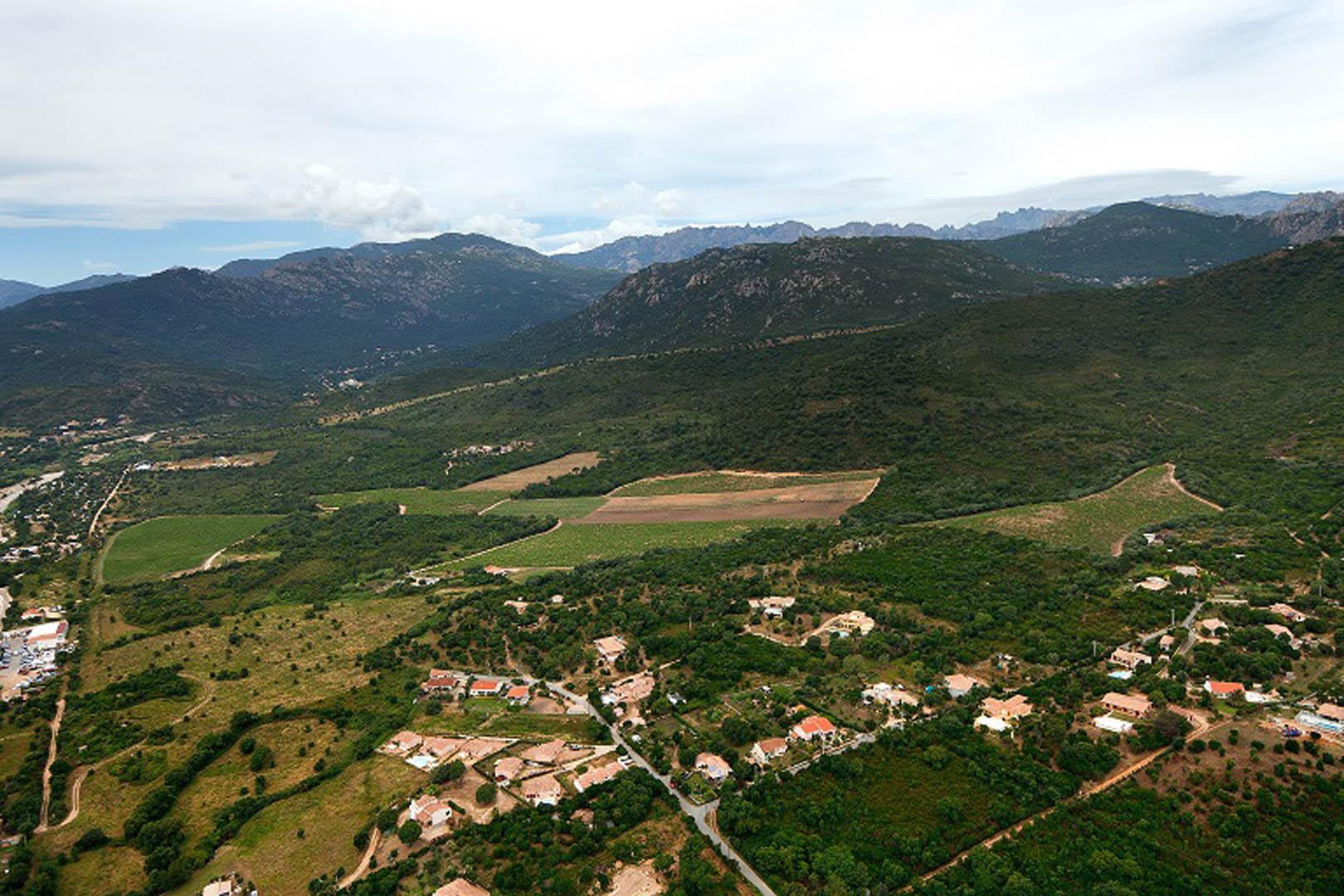 Un vin bio et bon le domaine de granajolo office de - Office tourisme sainte lucie de porto vecchio ...